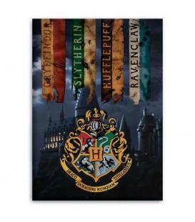WARNER BROS. 5407007981861  Manta polar Hogwarts Harry Potter Tamaño: 100x140cm. 100% polyester.